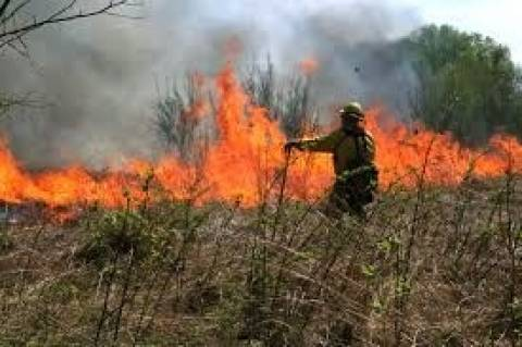 Φωτιά στην Κρήτη: Συναγερμός έχει σημάνει στον Χανδρά