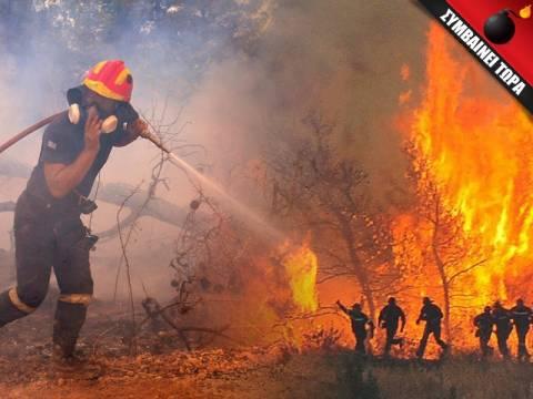 Ανεξέλεγκτη η φωτιά στο Αντισκάρι της Κρήτης - Απειλούνται κατοικίες