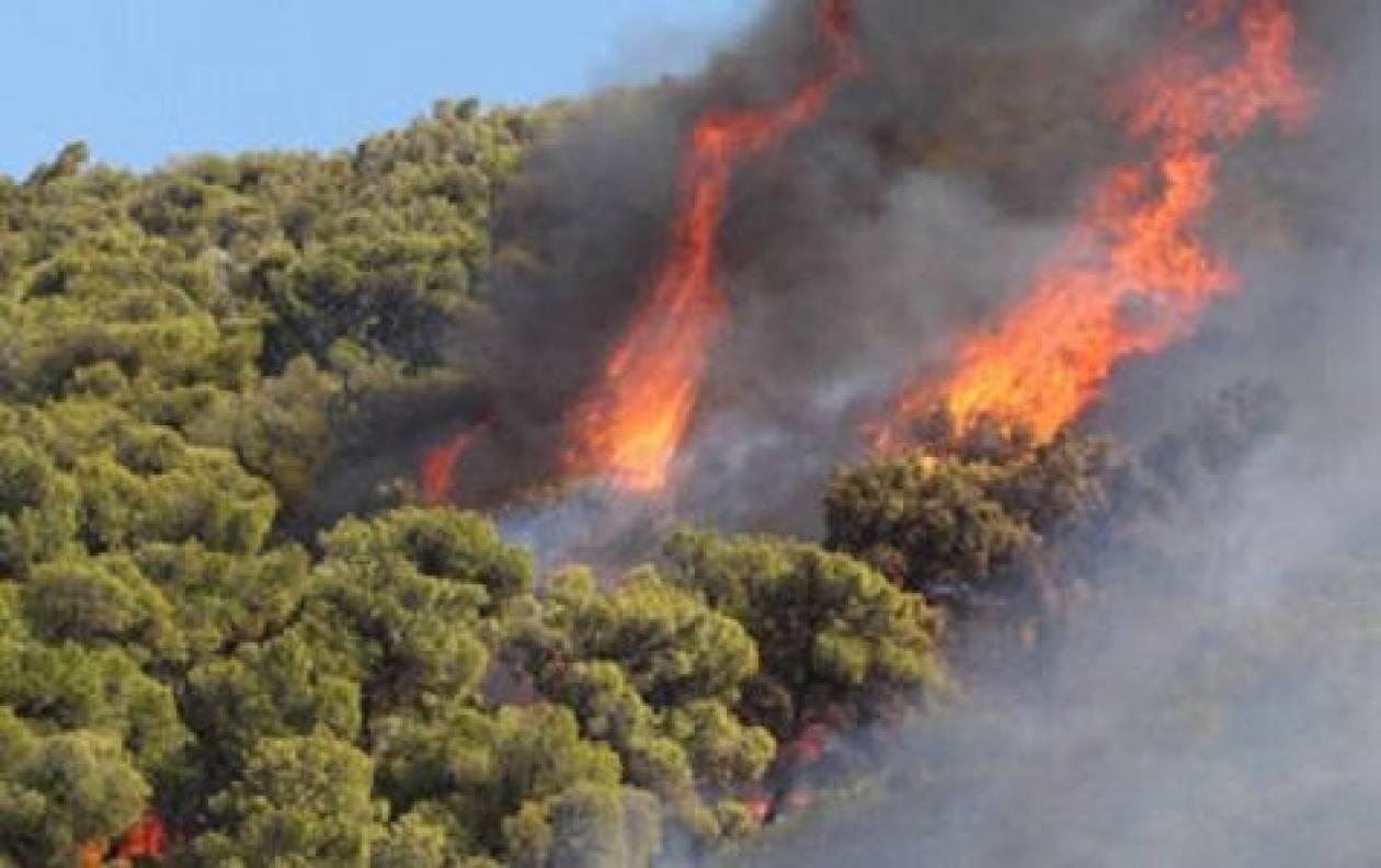 Ζάκυνθος: Σε εξέλιξη πυρκαγιά στην περιοχή Σκοπός