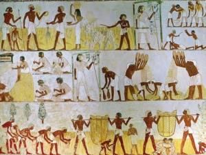 Απίστευτο: Δείτε τι έκαναν οι Φαραώ για να μην τους ενοχλούν οι μύγες!