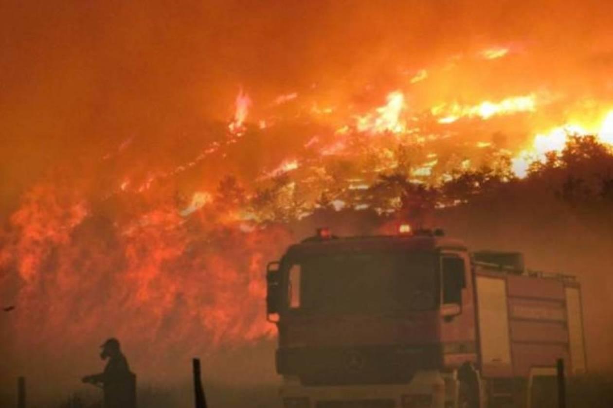 Ηράκλειο: Σύλληψη κτηνοτρόφου για την πυρκαγιά στο Αντισκάρι