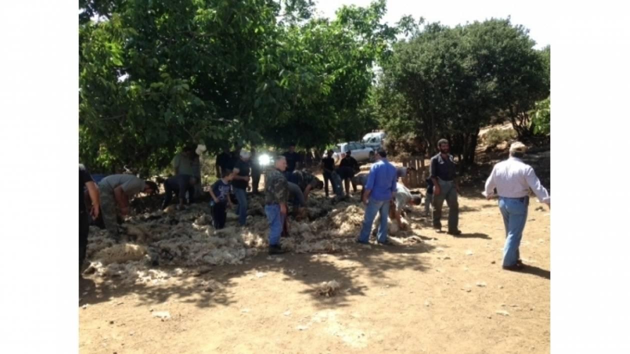 Κρήτη: Το γλέντησαν οι Ανωγειανοί στις καθιερωμένες κουρές