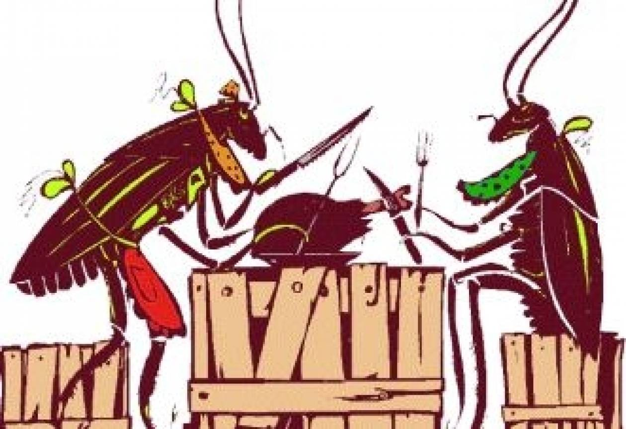 Πώς να εξολοθρεύσετε τις κατσαρίδες στο σπίτι σας