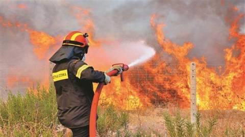 Μάνη: Σε εξέλιξη φωτιά στην Κάτω Καρέα