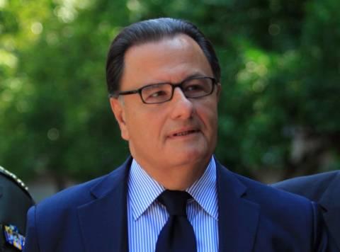 Ο Παναγιωτόπουλος για τις πρόωρες εκλογές