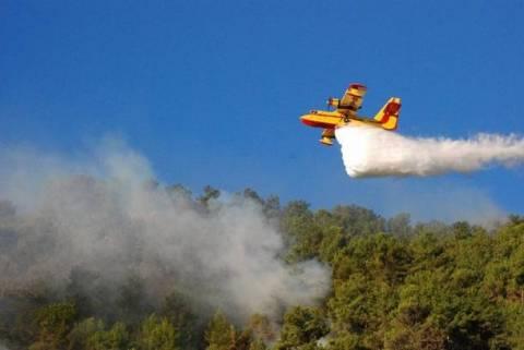 Μεσσηνία: Σε εξέλιξη πυρκαγιά-Δεν απειλούνται κατοικημένες περιοχές