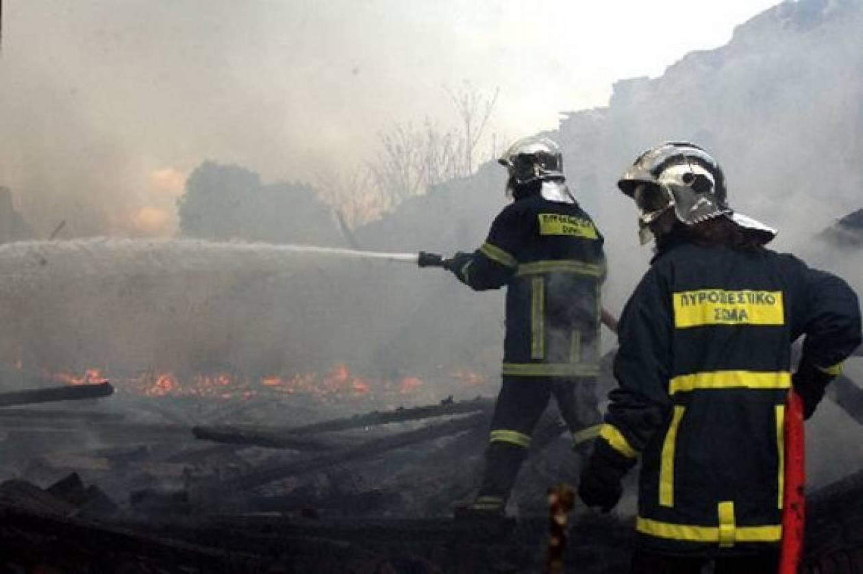 Υπό μερικό έλεγχο η πυρκαγιά στο Κιλκίς