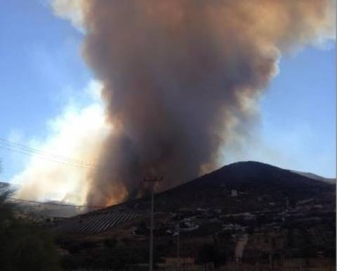 Φωτιά Κερατέα: Δείτε τις φωτό που έστειλε επισκέπτης του Newsbomb.gr