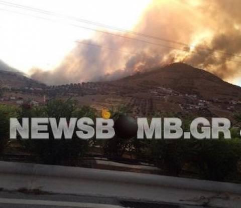Φωτιά Κερατέα: Ξυπνά ο πύρινος εφιάλτης–Αυξάνονται οι πυροσβεστικές δυνάμεις