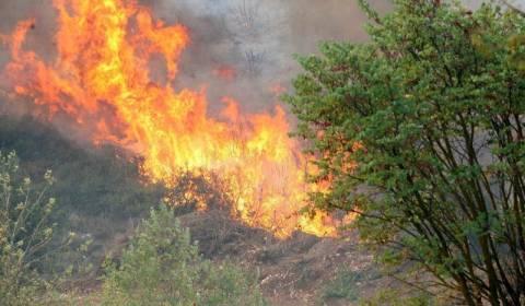 Yπο έλεγχο η φωτιά στο Αλιβέρι