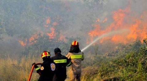 Αχαΐα: Σε εξέλιξη μεγάλη φωτιά στο Γιαννισκάρι