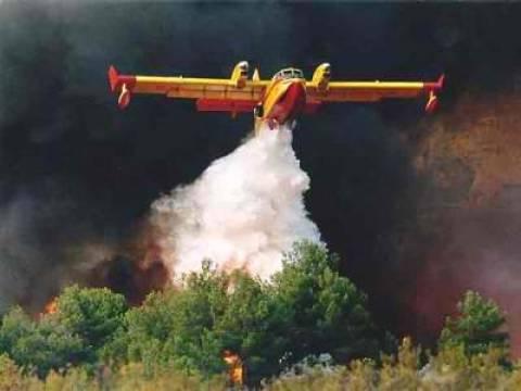 Υπό μερικό έλεγχο η φωτιά στο Γιαννισκάρι Αχαΐας