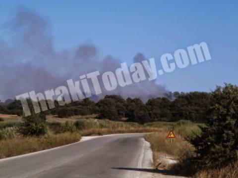 Ξάνθη: Σε εξέλιξη μεγάλη πυρκαγιά - Καίγονται τα Άβδηρα (vid)