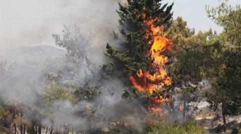 Δύο φωτιές σε εξέλιξη στο νομό Λάρισας