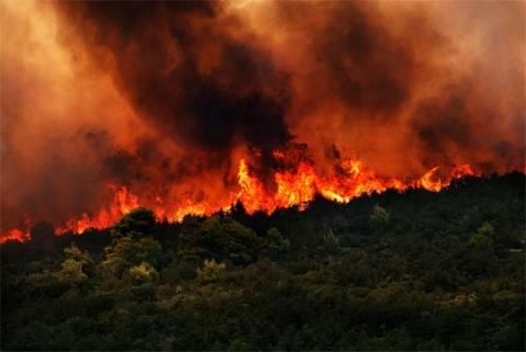 Χαλκιδική: Πυρκαγιά σε εξέλιξη στο Άγιο Όρος