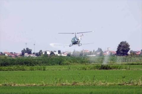 Θεσσαλονίκη: Αεροψεκασμοί το Σαββατοκύριακο για τα κουνούπια
