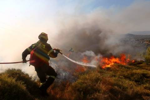 Κρήτη: Φωτιά έκαψε τουλάχιστον 15 στρέμματα με ελαιόδεντρα