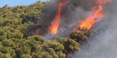 Σε εξέλιξη πυρκαγιά στο Μαλανδρένι Άργους