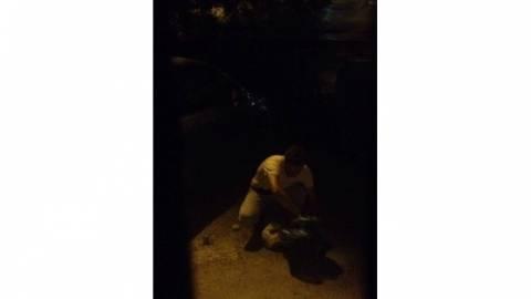 Κρήτη: Ψάχνουν την... επιβίωσή τους στα σκουπίδια (pics)