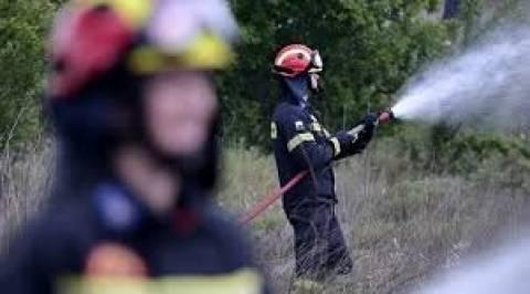 Ζάκυνθος: Υπό έλεγχο η φωτιά στο Φιολίτι