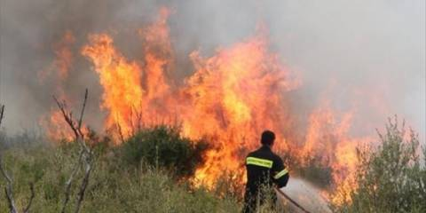 Κρήτη: Υπό μερικό έλεγχο η φωτιά στην Αγία Φωτεινή Αμαρίου