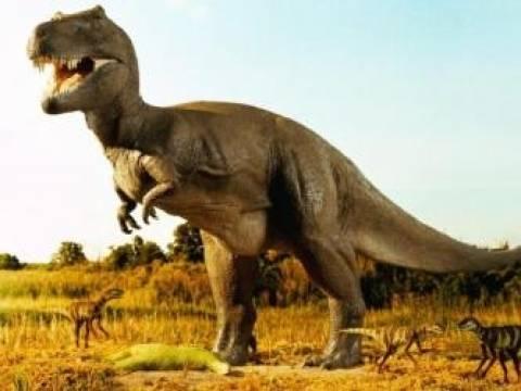 Όλοι (ή σχεδόν όλοι) οι δεινόσαυροι είχαν κάποτε φτερά!