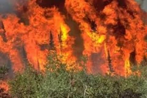 Ζάκυνθος: Μεγάλη πυρκαγιά στην περιοχή Σκοπός