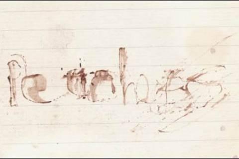 Peaches Geldof: Άφησε σημείωμα γραμμένο με το αίμα της! (pics)