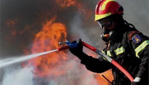Κρήτη: Φωτιά στον Προφήτη Ηλία - Συναγερμός στην Πυροσβεστική