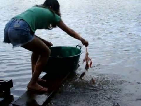Βίντεο: Έτσι ψαρεύουν πιράνχας στη Βραζιλία