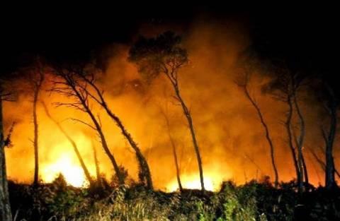 Κρήτη: Φωτιά τη νύχτα στο Αμάρι