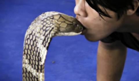 Ένα φιλί που μπορεί να... σκοτώσει