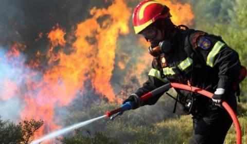 Πυρκαγιά στον περιφερειακό της Πάτρας
