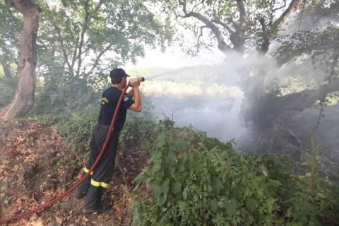 Πάτρα: Υπό μερικό έλεγχο τέθηκε η φωτιά στην περιμετρική οδό