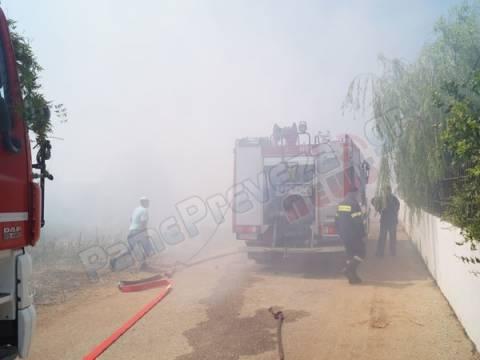Πρέβεζα: Κινδύνεψαν σπίτια από πυρκαγιά (pics&vid)