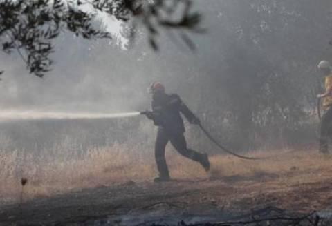 Αθίκια Κορινθίας: Σε ύφεση η πυρκαγιά