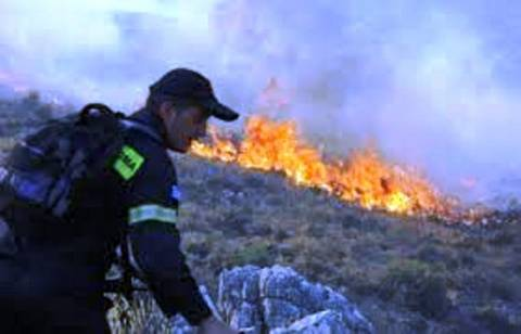 Φωτιά σε εξέλιξη στο Δίστομο Βοιωτίας