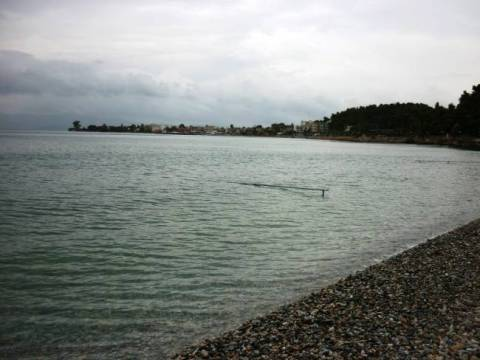 Εντοπίστηκαν φυσίγγια σε παραλία της Αττικής