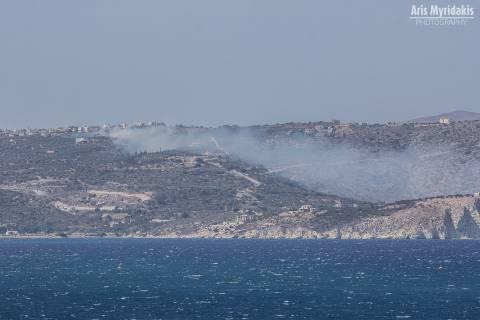 Στις φλόγες τα Χανιά – Πλησιάζει σε κατοικημένη περιοχή η φωτιά
