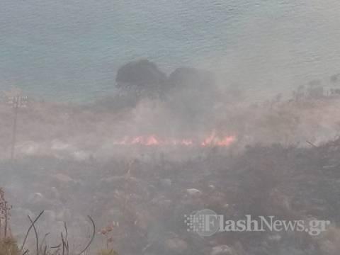 Κρήτη: Πυρκαγιά στο Πλατάνι της Σούδας (pics)