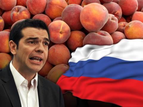 Αλ. Τσίπρας: Ο οικονομικός πόλεμος με τη Ρωσία θα έχει καταστροφικές συνέπειες