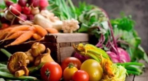 «Φλερτ» Κύπρου με Αίγυπτο-ΗΑΕ για εξαγωγές γεωργικών ειδών