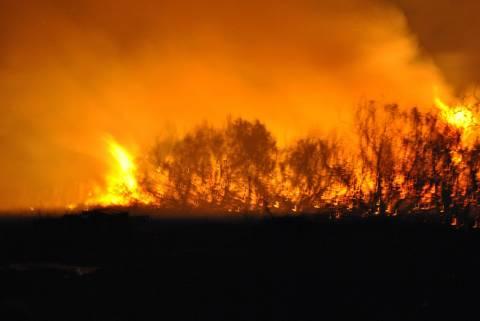 Λάρισα: Υπό μερικό έλεγχο η φωτιά στο Δαμάσι