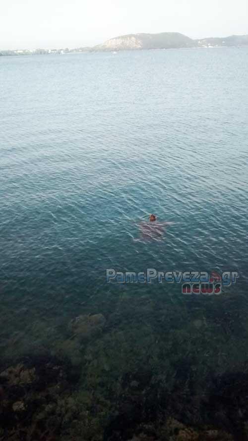 Πρέβεζα: Δεν φαντάζεστε με ποια εκλεκτή… παρέα ψάρευε (pics)
