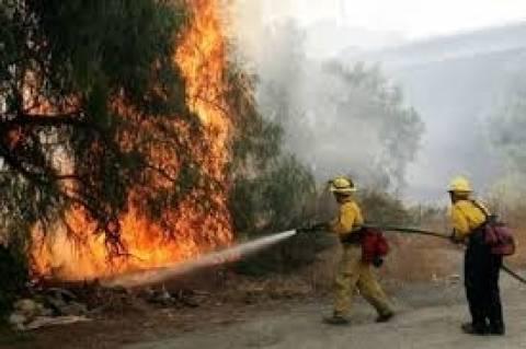 Μεγάλη πυρκαγιά σε εξέλιξη στο Καλοχώρι Καλαμπάκας