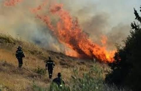 Κυριάκι Βοιωτίας: Πυρκαγιά καίει χαμηλή βλάστηση σε χαράδρα