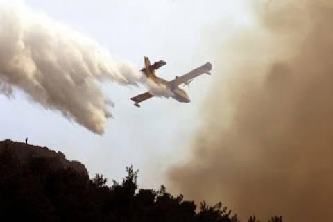 Συναγερμός στην Οίτη: Σε εξέλιξη μεγάλη πυρκαγιά-Ισχυρές δυνάμεις στο σημείο