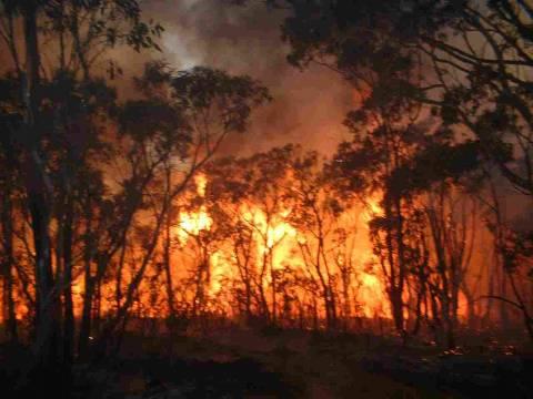 Κυνουρία: Σε ύφεση η φωτιά