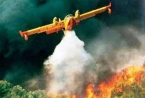 Φθιώτιδα: Μάχη με τις φλόγες σε δυο πύρινα μέτωπα