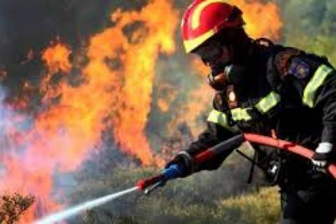 Σε εξέλιξη πυρκαγιά στα Φάρσαλα